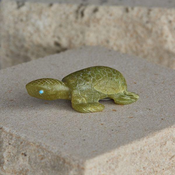 Fetish Turtle 4 72